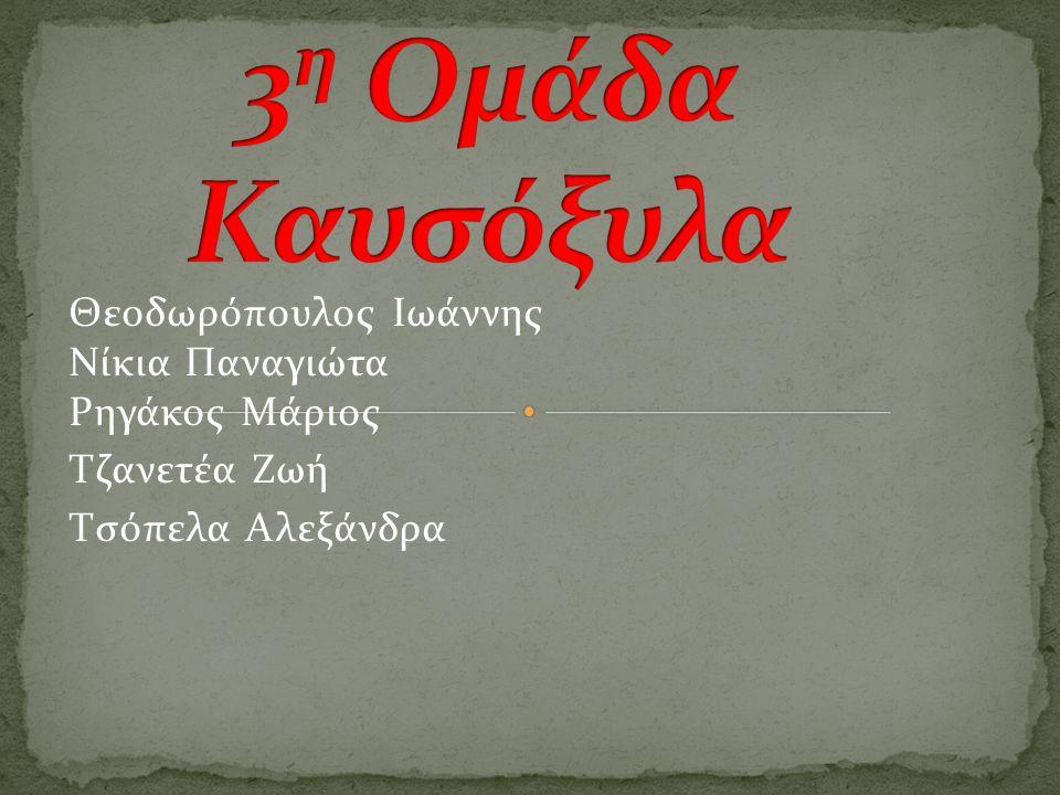 Θεοδωρόπουλος Ιωάννης Νίκια Παναγιώτα Ρηγάκος Μάριος Τζανετέα Ζωή Τσόπελα Αλεξάνδρα