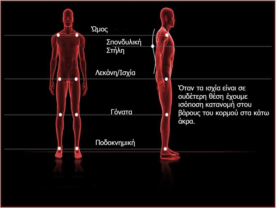 IST/UH K ινησιολογικές M ελέτες 2010-2011 Ώμος Σπονδυλική Στήλη Λεκάνη/Ισχία Γόνατα Ποδοκνημική Όταν τα ισχία είναι σε ουδέτερη θέση έχουμε ισόποση κα