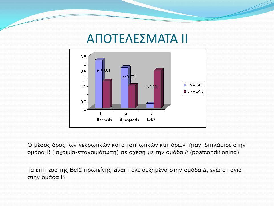 ΑΠΟΤΕΛΕΣΜΑΤΑ ΙΙ Ο μέσος όρος των νεκρωτικών και αποπτωτικών κυττάρων ήταν διπλάσιος στην ομάδα Β (ισχαιμία-επαναιμάτωση) σε σχέση με την ομάδα Δ (post