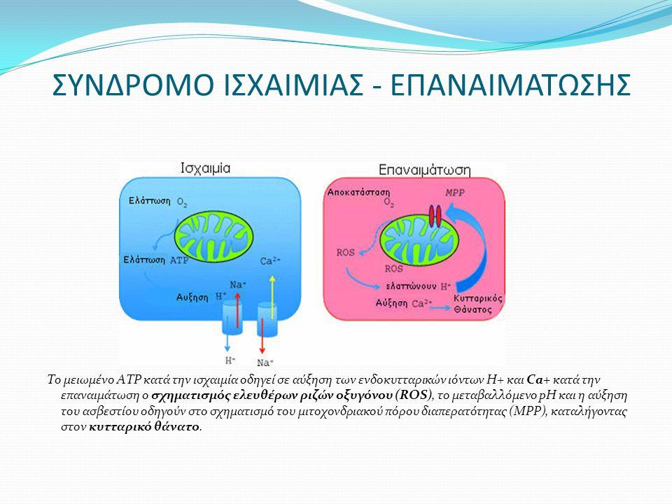 ΣΥΝΔΡΟΜΟ ΙΣΧΑΙΜΙΑΣ - ΕΠΑΝΑΙΜΑΤΩΣΗΣ Το μειωμένο ΑΤΡ κατά την ισχαιμία οδηγεί σε αύξηση των ενδοκυτταρικών ιόντων Η+ και Ca+ κατά την επαναιμάτωση ο σχη
