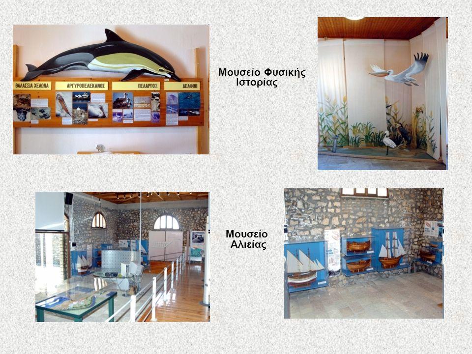 Μουσείο Φυσικής Ιστορίας Μουσείο Αλιείας