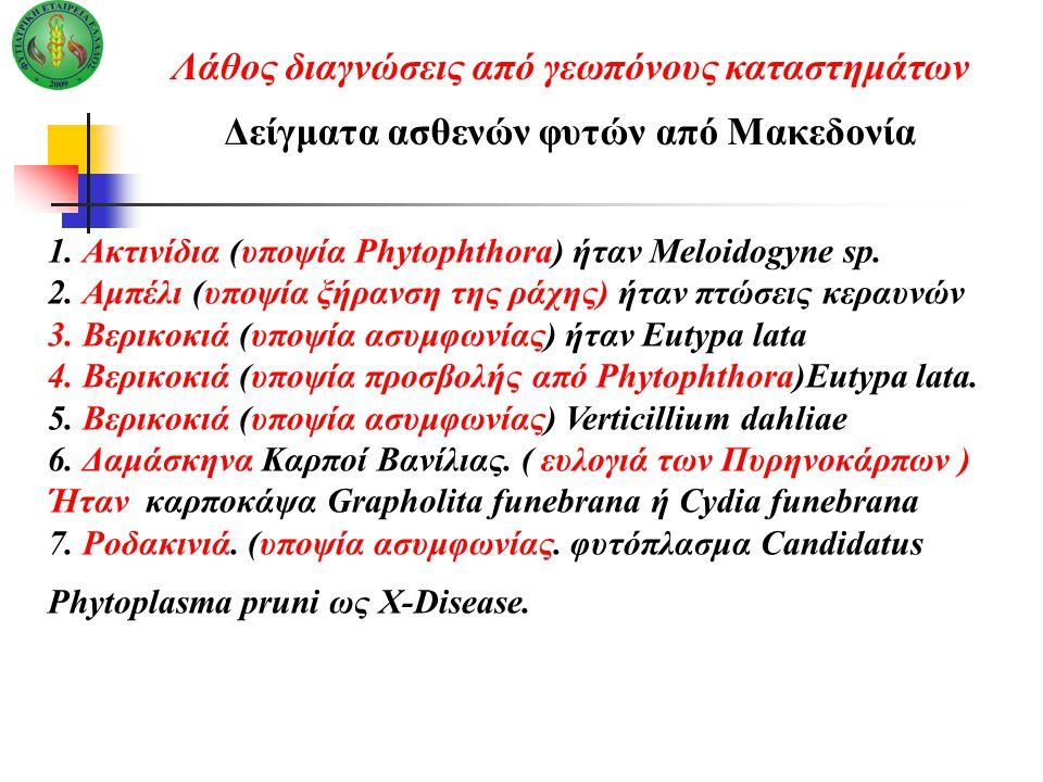 1. Ακτινίδια (υποψία Phytophthora) ήταν Meloidogyne sp. 2. Αμπέλι (υποψία ξήρανση της ράχης) ήταν πτώσεις κεραυνών 3. Βερικοκιά (υποψία ασυμ