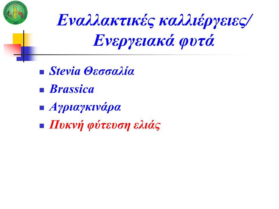 Εναλλακτικές καλλιέργειες/ Ενεργειακά φυτά Stevia Θεσσαλία Brassica Αγριαγκινάρα Πυκνή φύτευση ελιάς