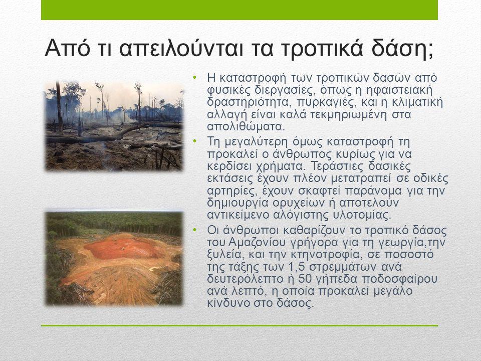 Από τι απειλούνται τα τροπικά δάση; Η καταστροφή των τροπικών δασών από φυσικές διεργασίες, όπως η ηφαιστειακή δραστηριότητα, πυρκαγιές, και η κλιματι