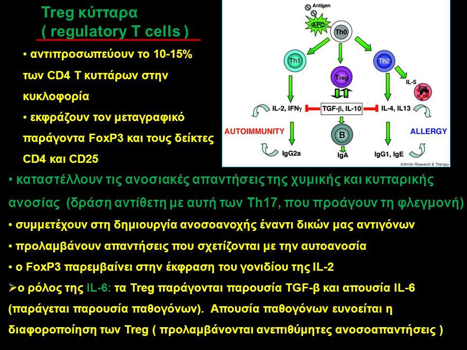 Treg κύτταρα ( regulatory T cells ) αντιπροσωπεύουν το 10-15% των CD4 T κυττάρων στην κυκλοφορία εκφράζουν τον μεταγραφικό παράγοντα FoxP3 και τους δε