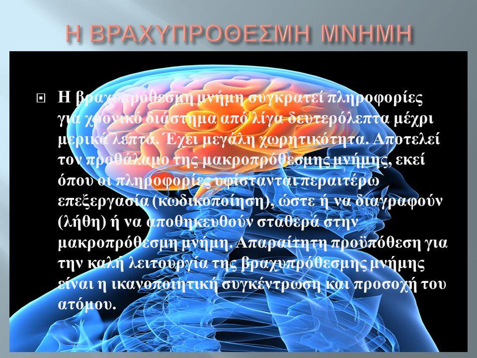  Η βραχυπρόθεσμη μνήμη συγκρατεί πληροφορίες για χρονικό διάστημα από λίγα δευτερόλεπτα μέχρι μερικά λεπτά. Έχει μεγάλη χωρητικότητα. Αποτελεί τον πρ