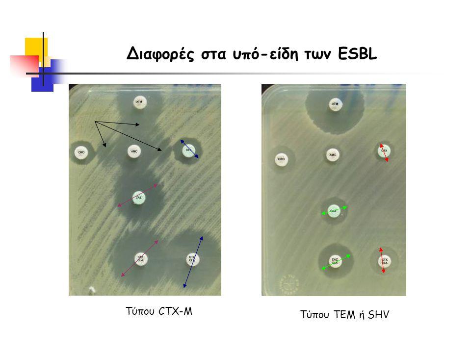 Τύπου CTX-M Τύπου TEM ή SHV Διαφορές στα υπό-είδη των ESBL