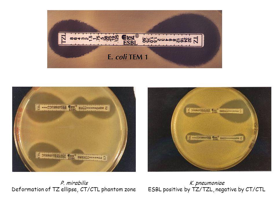 P. mirabilis Deformation of TZ ellipse, CT/CTL phantom zone K. pneumoniae ESBL positive by TZ/TZL, negative by CT/CTL