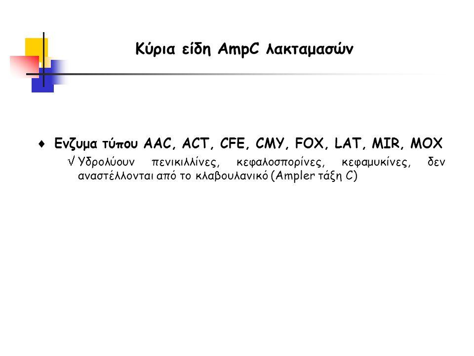 Κύρια είδη AmpC λακταμασών  Ενζυμα τύπου AAC, ACT, CFE, CMY, FOX, LAT, MIR, MOX  Υδρολύουν πενικιλλίνες, κεφαλοσπορίνες, κεφαμυκίνες, δεν αναστέλλονται από το κλαβουλανικό (Ampler τάξη C)