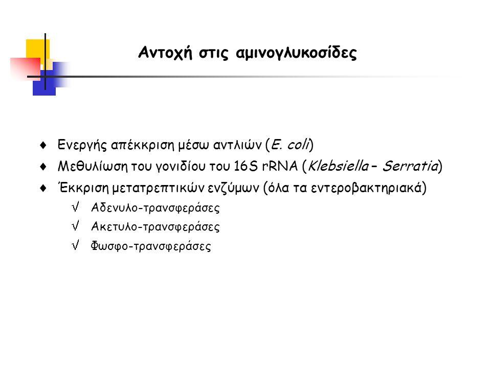 Ενεργής απέκκριση μέσω αντλιών (E. coli)  Μεθυλίωση του γονιδίου του 16S rRNA (Klebsiella – Serratia)  Έκκριση μετατρεπτικών ενζύμων (όλα τα εντερ