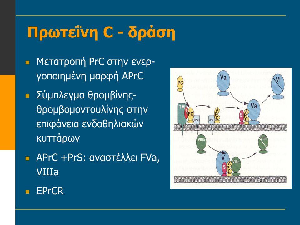 Πρωτεΐνη C - δράση  Μετατροπή PrC στην ενερ- γοποιημένη μορφή APrC  Σύμπλεγμα θρομβίνης- θρομβομοντουλίνης στην επιφάνεια ενδοθηλιακών κυττάρων  AP