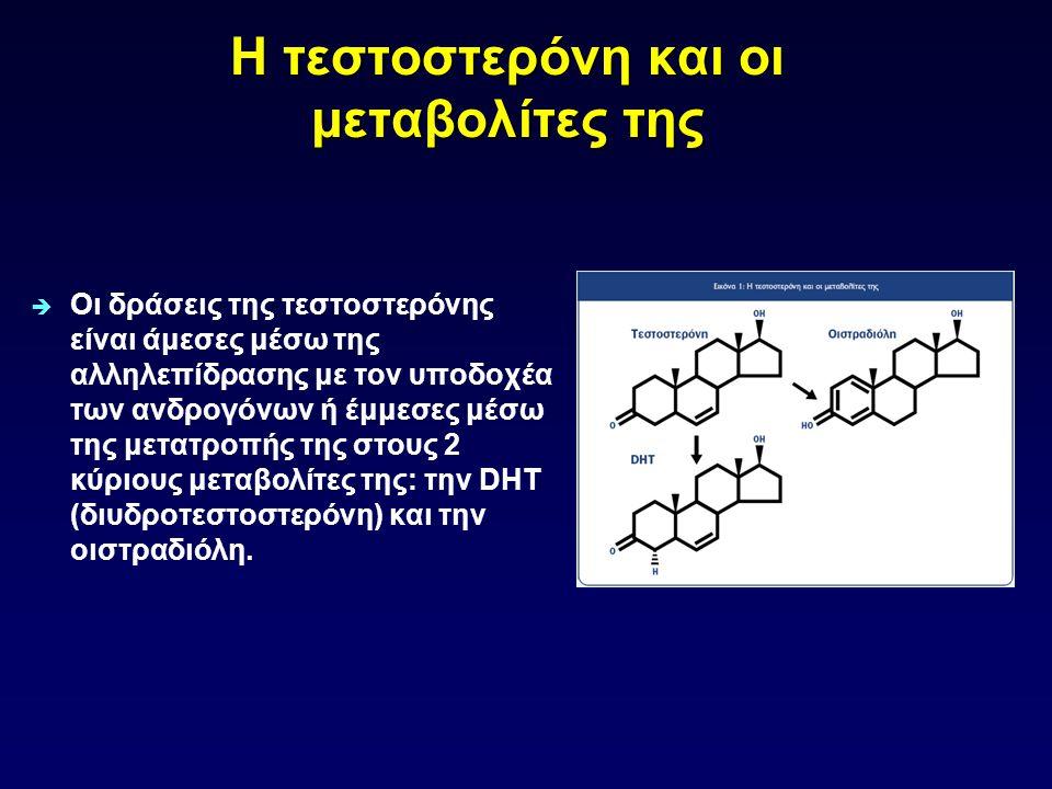 Η τεστοστερόνη και οι μεταβολίτες της  Οι δράσεις της τεστοστερόνης είναι άμεσες μέσω της αλληλεπίδρασης με τον υποδοχέα των ανδρογόνων ή έμμεσες μέσ