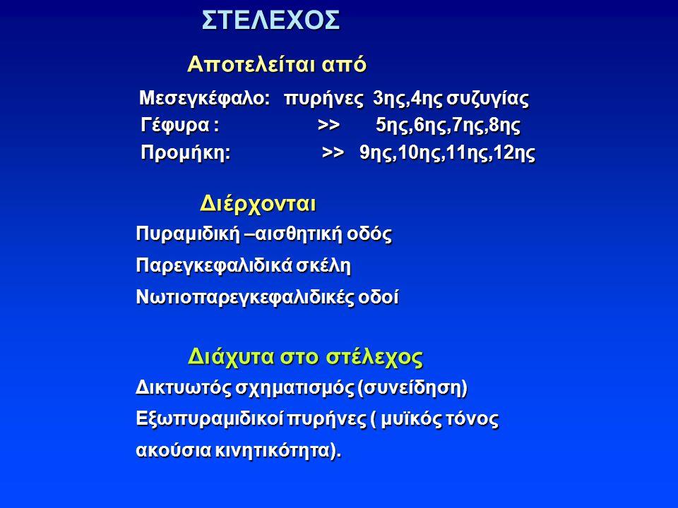 ΣΤΕΛΕΧΟΣ ΣΤΕΛΕΧΟΣ Αποτελείται από Αποτελείται από Μεσεγκέφαλο: πυρήνες 3ης,4ης συζυγίας Μεσεγκέφαλο: πυρήνες 3ης,4ης συζυγίας Γέφυρα : >> 5ης,6ης,7ης,8ης Γέφυρα : >> 5ης,6ης,7ης,8ης Προμήκη: >> 9ης,10ης,11ης,12ης Προμήκη: >> 9ης,10ης,11ης,12ης Διέρχονται Διέρχονται Πυραμιδική –αισθητική οδός Πυραμιδική –αισθητική οδός Παρεγκεφαλιδικά σκέλη Παρεγκεφαλιδικά σκέλη Νωτιοπαρεγκεφαλιδικές οδοί Νωτιοπαρεγκεφαλιδικές οδοί Διάχυτα στο στέλεχος Διάχυτα στο στέλεχος Δικτυωτός σχηματισμός (συνείδηση) Δικτυωτός σχηματισμός (συνείδηση) Εξωπυραμιδικοί πυρήνες ( μυϊκός τόνος Εξωπυραμιδικοί πυρήνες ( μυϊκός τόνος ακούσια κινητικότητα).