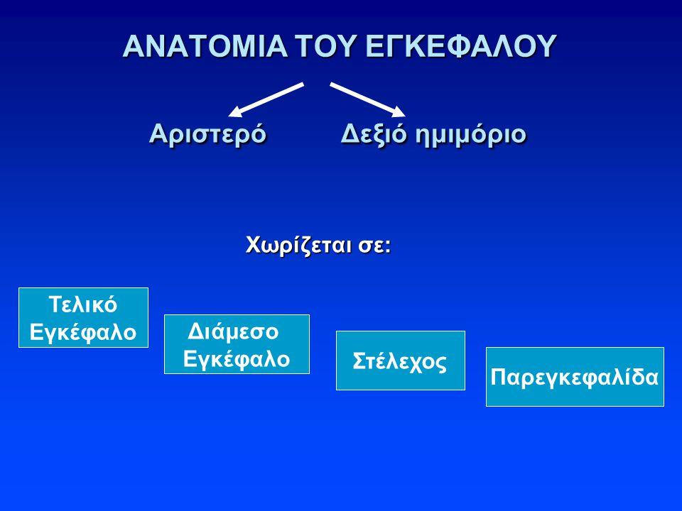ΑΝΑΤΟΜΙΑ ΤΟΥ ΕΓΚΕΦΑΛΟΥ Αριστερό Δεξιό ημιμόριο Αριστερό Δεξιό ημιμόριο Χωρίζεται σε: Χωρίζεται σε: Τελικό Εγκέφαλο Διάμεσο Εγκέφαλο Στέλεχος Παρεγκεφαλίδα