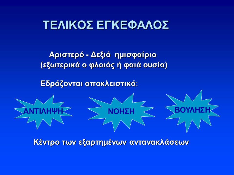 ΤΕΛΙΚΟΣ ΕΓΚΕΦΑΛΟΣ Αριστερό - Δεξιό ημισφαίριο (εξωτερικά ο φλοιός ή φαιά ουσία) Εδράζονται αποκλειστικά: Κέντρο των εξαρτημένων αντανακλάσεων ΤΕΛΙΚΟΣ ΕΓΚΕΦΑΛΟΣ Αριστερό - Δεξιό ημισφαίριο (εξωτερικά ο φλοιός ή φαιά ουσία) Εδράζονται αποκλειστικά: Κέντρο των εξαρτημένων αντανακλάσεων ΑΝΤΙΛΗΨΗ ΝΟΗΣΗ ΒΟΥΛΗΣΗ