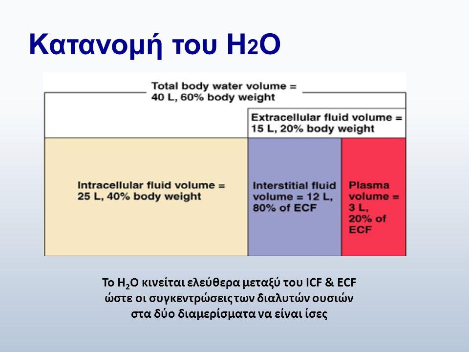 Κατανομή του H 2 O Το H 2 O κινείται ελεύθερα μεταξύ του ICF & ECF ώστε οι συγκεντρώσεις των διαλυτών ουσιών στα δύο διαμερίσματα να είναι ίσες