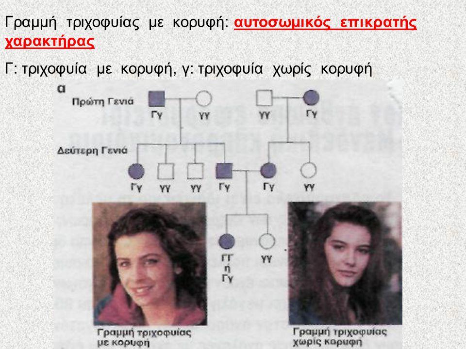 Γενεαλογικό δένδρο Γενεαλογικό δένδρο είναι η διαγραμματική απεικόνιση των μελών μιας οικογένειας για πολλές γενιές, στην οποία αναπαριστώνται οι γάμοι, η σειρά των γεννήσεων, το φύλο των ατόμων και η φαινότυπος τους για ένα χαρακτηριστικό Κυριότεροι συμβολισμοί Αρσενικό άτομο που δεν εμφανίζει το χαρακτηριστικό θηλυκό άτομο που εμφανίζει το χαρακτηριστικό αιμομειξία γεννήσεις Παιδί αγνώστου φύλου γάμος