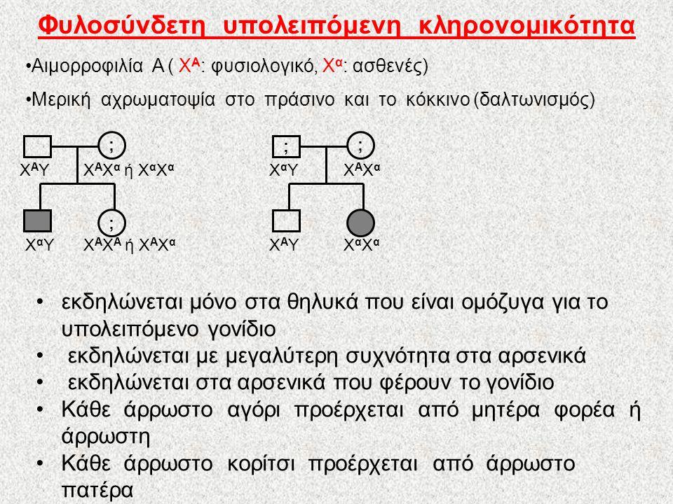 Φυλοσύνδετη υπολειπόμενη κληρονομικότητα •Αιμορροφιλία Α ( Χ Α : φυσιολογικό, Χ α : ασθενές) •Μερική αχρωματοψία στο πράσινο και το κόκκινο (δαλτωνισμός) ; ; •εκδηλώνεται μόνο στα θηλυκά που είναι ομόζυγα για το υπολειπόμενο γονίδιο • εκδηλώνεται με μεγαλύτερη συχνότητα στα αρσενικά • εκδηλώνεται στα αρσενικά που φέρουν το γονίδιο •Κάθε άρρωστο αγόρι προέρχεται από μητέρα φορέα ή άρρωστη •Κάθε άρρωστο κορίτσι προέρχεται από άρρωστο πατέρα ΧΑΥΧΑΥ ΧαΥΧαΥ Χ Α Χ α ή Χ α Χ α Χ Α Χ A ή Χ A Χ α ; ; ΧαΧαΧαΧα ΧΑΥΧΑΥ ΧαΥΧαΥΧΑΧαΧΑΧα