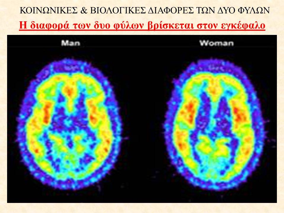 ΚΟΙΝΩΝΙΚΕΣ & ΒΙΟΛΟΓΙΚΕΣ ΔΙΑΦΟΡΕΣ ΤΩΝ ΔΥΟ ΦΥΛΩΝ Η διαφορά των δυο φύλων βρίσκεται στον εγκέφαλο
