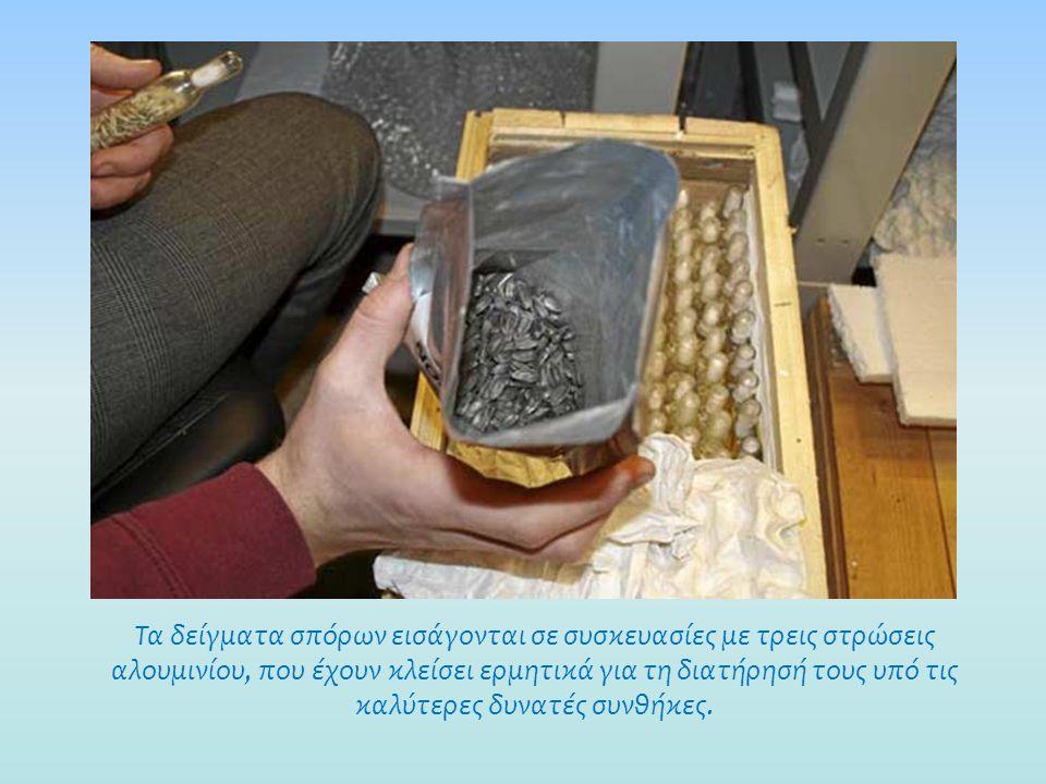 Οι τεχνικοί πρέπει να ταξινομούν κάθε δείγμα, προσδιορίζοντας το είδος, την προέλευση και την ηλικία.