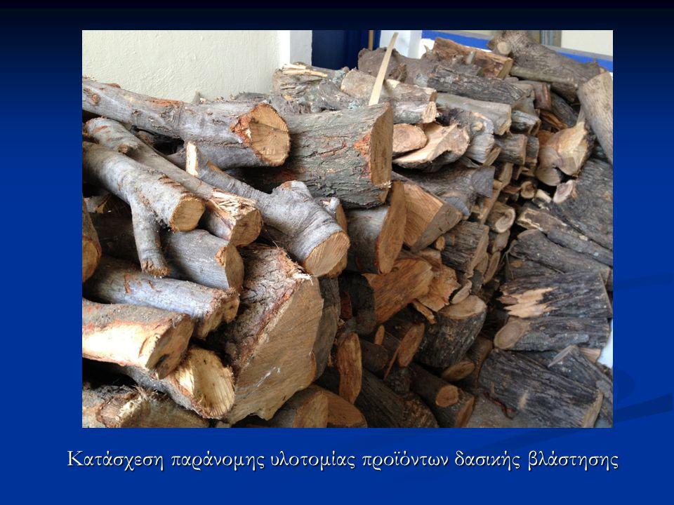 Κατάσχεση παράνομης υλοτομίας προϊόντων δασικής βλάστησης