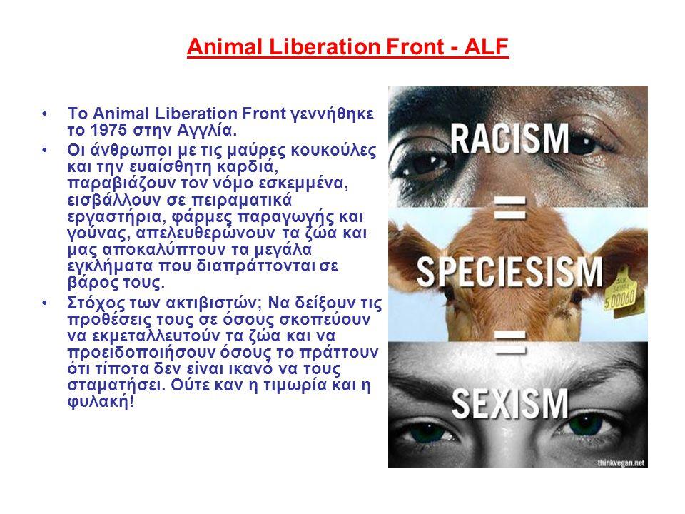 Animal Liberation Front - ΑLF •Το Animal Liberation Front γεννήθηκε το 1975 στην Αγγλία. •Οι άνθρωποι με τις μαύρες κουκούλες και την ευαίσθητη καρδιά