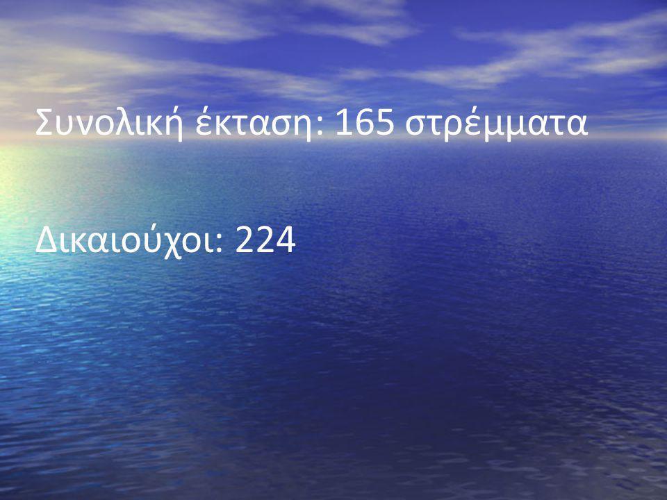 Συνολική έκταση: 165 στρέμματα Δικαιούχοι: 224