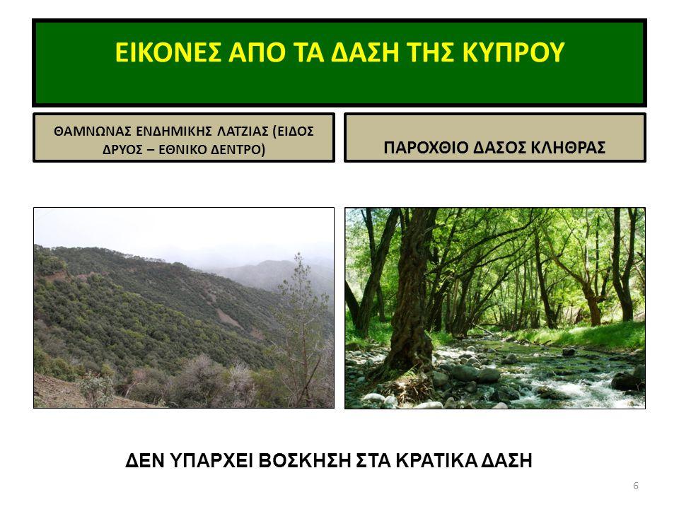 ΤΟ ΤΜΗΜΑ ΔΑΣΩΝ  Υπάγεται στο Υπουργείο Γεωργίας, Φυσικών Πόρων και Περιβάλλοντος (με Τμήματα/Υπηρεσίες Γεωργίας, Αναπτύξεως Υδάτων, Κτηνιατρικών Υπηρεσιών, Αλιείας, Γεωλογίας, Περιβάλλοντος, Μετεωρολογίας, Αναδασμού, Μεταλλείων, Ινστιτούτο Γεωργικών Ερευνών)  Προσωπικό: 35 επιστημονικό προσωπικό, 290 τεχνολόγοι και 1000 ωρομίσθιοι (μόνιμοι & εποχικοί)  Ετήσιοι προϋπολογισμοί : € 40.000.000 μέσος όρος 3 ετών.