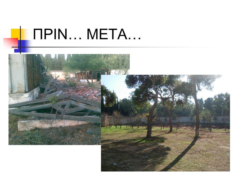 ΠΡΙΝ… ΜΕΤΑ…