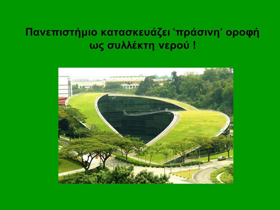 Πανεπιστήμιο κατασκευάζει ʽ πράσινη ' οροφή ως συλλέκτη νερού !