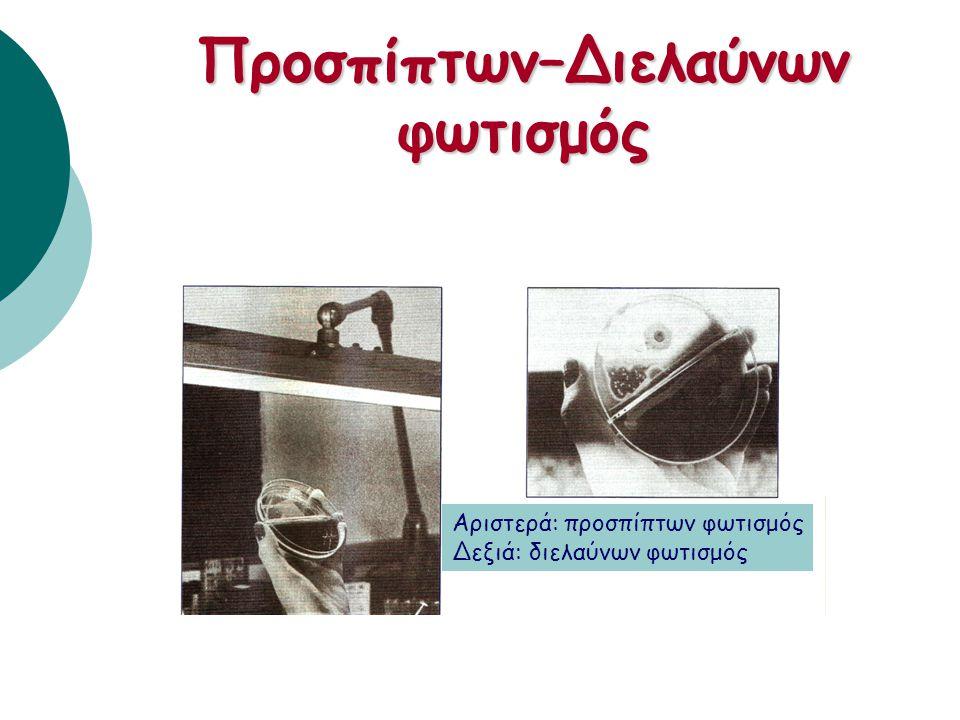 Ερμηνεία πρωτοκαλλιέργειας 1. Αρίθμηση αποικιών 2. Μακροσκοπική εξέταση μορφολογίας αποικιών 3. Μικροσκοπική εξέταση μορφολογίας μικροβίου (Gram χρώση