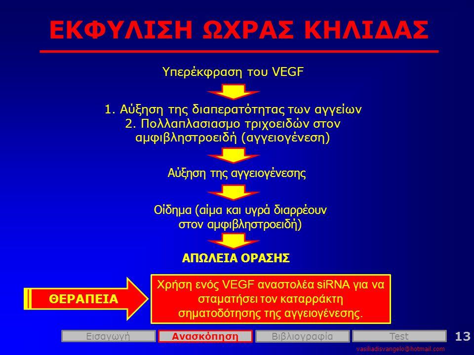 ΕΚΦΥΛΙΣΗ ΩΧΡΑΣ ΚΗΛΙΔΑΣ vasiliadisvangelo@hotmail.com 13 Υπερέκφραση του VEGF 1.