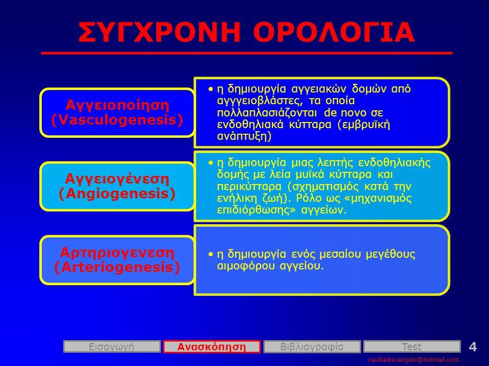 ΣΥΓΧΡΟΝΗ ΟΡΟΛΟΓΙΑ vasiliadisvangelo@hotmail.com 4 •η δημιουργία αγγειακών δομών από αγγγειοβλάστες, τα οποία πολλαπλασιάζονται de novo σε ενδοθηλιακά κύτταρα (εμβρυϊκή ανάπτυξη) Αγγειοποίηση (Vasculogenesis) •η δημιουργία μιας λεπτής ενδοθηλιακής δομής με λεία μυϊκά κύτταρα και περικύτταρα (σχηματισμός κατά την ενήλικη ζωή).