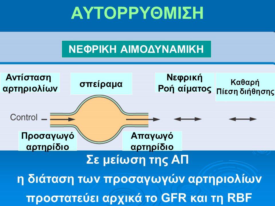ΑΥΤΟΡΡΥΘΜΙΣΗ ΝΕΦΡΙΚΗ ΑΙΜΟΔΥΝΑΜΙΚΗ Σε μείωση της ΑΠ η διάταση των προσαγωγών αρτηριολίων προστατεύει αρχικά το GFR και τη RBF Νεφρική Ροή αίματος Καθαρή Πίεση διήθησης Αντίσταση αρτηριολίων Απαγωγό αρτηρίδιο Προσαγωγό αρτηρίδιο σπείραμα