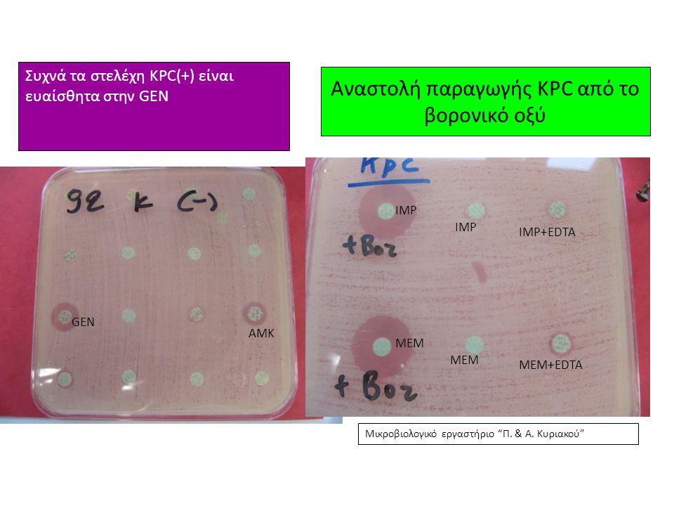 Αναστολή παραγωγής KPC από το βορονικό οξύ GEN AMK IMP MEM IMP IMP+EDTA MEM+EDTA Συχνά τα στελέχη KPC(+) είναι ευαίσθητα στην GEN Μικροβιολογικό εργασ