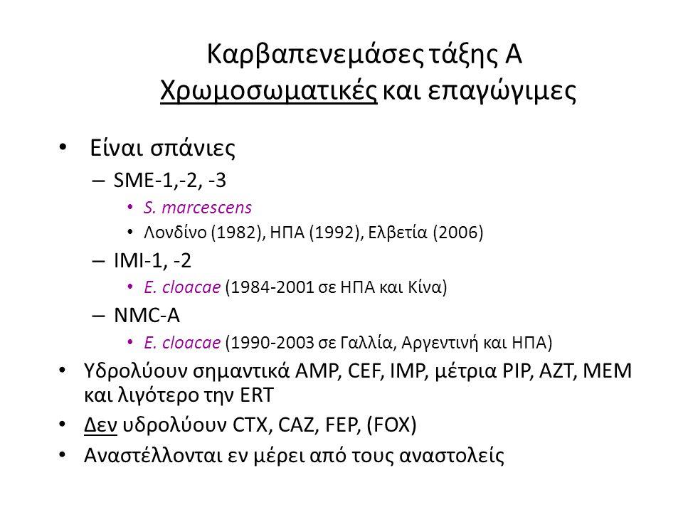 Καρβαπενεμάσες τάξης A Χρωμοσωματικές και επαγώγιμες • Είναι σπάνιες – SME-1,-2, -3 • S. marcescens • Λονδίνο (1982), ΗΠΑ (1992), Ελβετία (2006) – IMI