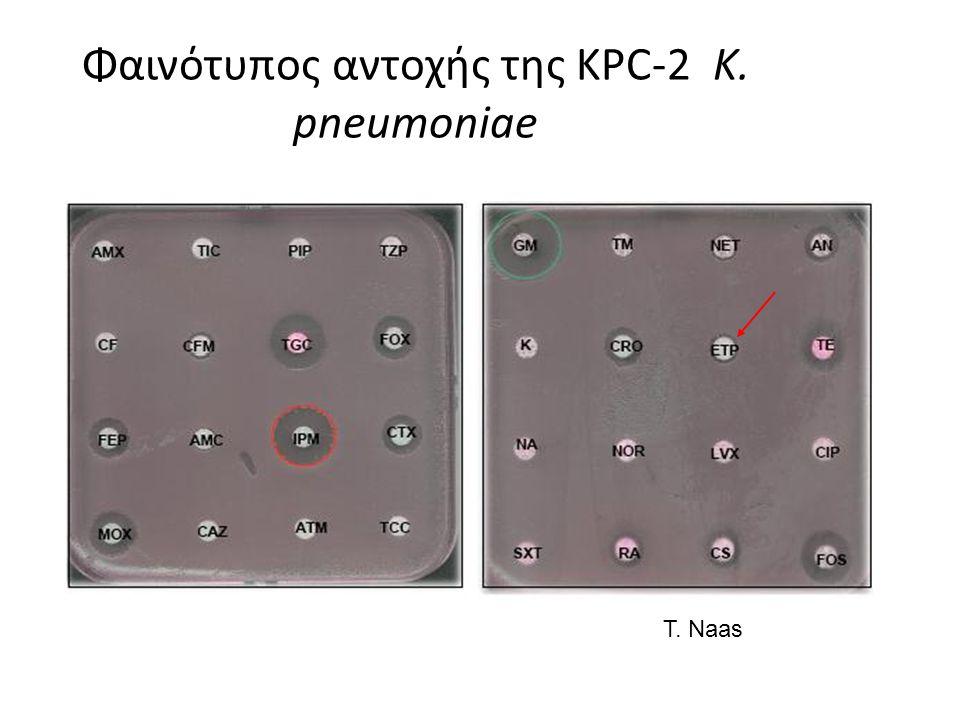 Φαινότυπος αντοχής της KPC-2 K. pneumoniae T. Naas