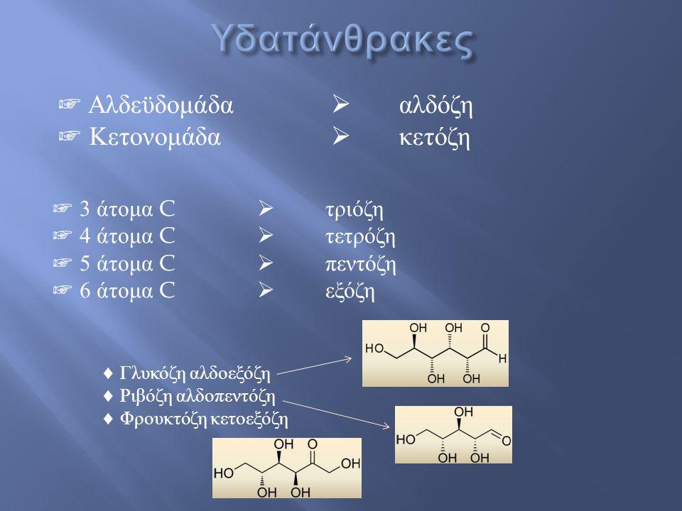 ☞ Αλδεϋδομάδα  αλδόζη ☞ Κετονομάδα  κετόζη ☞ 3 άτομα C  τριόζη ☞ 4 άτομα C  τετρόζη ☞ 5 άτομα C  πεντόζη ☞ 6 άτομα C  εξόζη  Γλυκόζη αλδοεξόζη