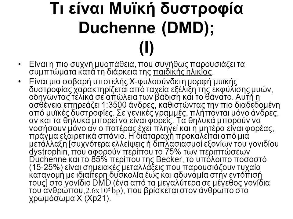 Τι είναι Μυϊκή δυστροφία Duchenne (DMD); (I) •Είναι η πιο συχνή μυοπάθεια, που συνήθως παρουσιάζει τα συμπτώματα κατά τη διάρκεια της παιδικής ηλικίας.