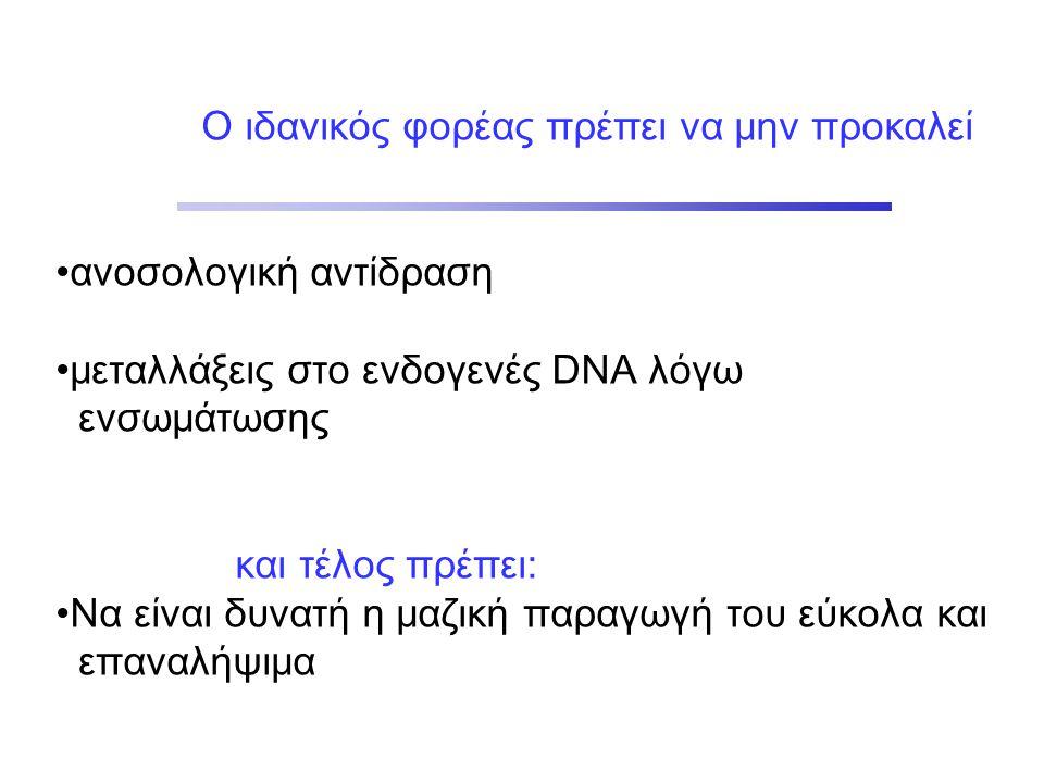 Ο ιδανικός φορέας πρέπει να μην προκαλεί •ανοσολογική αντίδραση •μεταλλάξεις στο ενδογενές DNA λόγω ενσωμάτωσης και τέλος πρέπει: •Να είναι δυνατή η μαζική παραγωγή του εύκολα και επαναλήψιμα