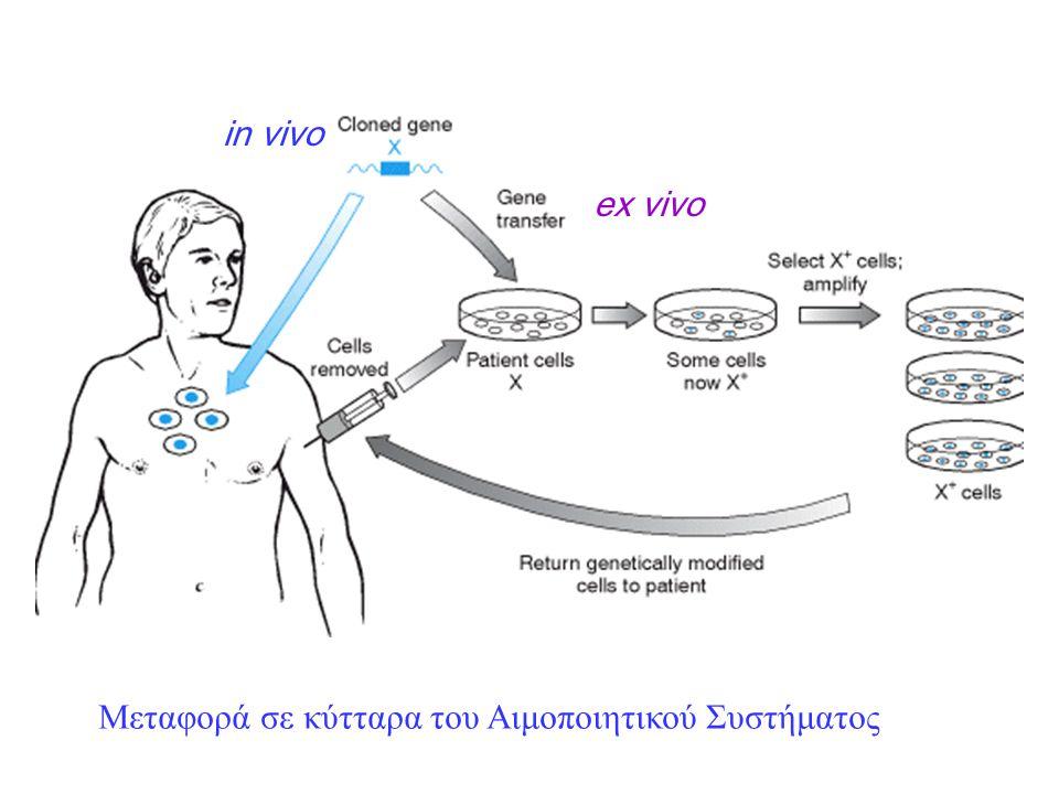 Στρατηγικές Ως προς τη Μεταφορά στον Άνθρωπο: in vivo, ex vivo Ως προς την ασθένεια αρχικές προσεγγίσεις 1.Μεταφορά του φυσιολογικού γονιδίου 2.Επιλεκτική θανάτωση των κυττάρων της ασθένειας νεώτερες προσεγγίσεις 1.Αναστολή της έκφρασης γονιδίου 2.Επίδραση στον γονότυπο με τεχνητά μόρια, ZFP