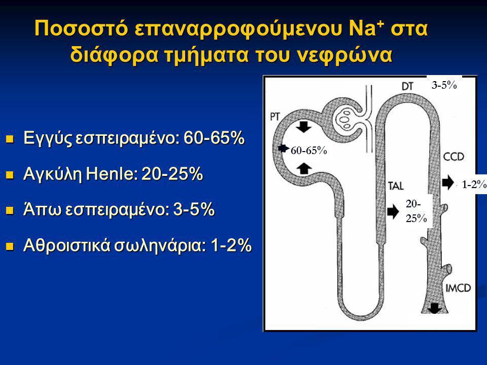 Ποσοστό επαναρροφούμενου Na + στα διάφορα τμήματα του νεφρώνα  Εγγύς εσπειραμένο: 60-65%  Αγκύλη Henle: 20-25%  Άπω εσπειραμένο: 3-5%  Αθροιστικά