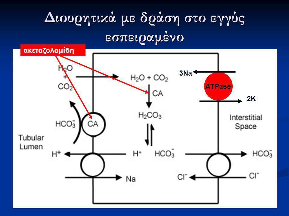 Διουρητικά με δράση στο εγγύς εσπειραμένο ATPase 2K 3Na ακεταζολαμίδη