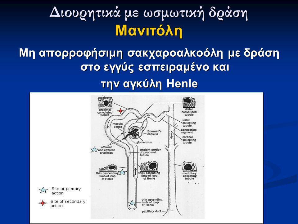 Διουρητικά με ωσμωτική δράση Μανιτόλη Μη απορροφήσιμη σακχαροαλκοόλη με δράση στο εγγύς εσπειραμένο και την αγκύλη Henle