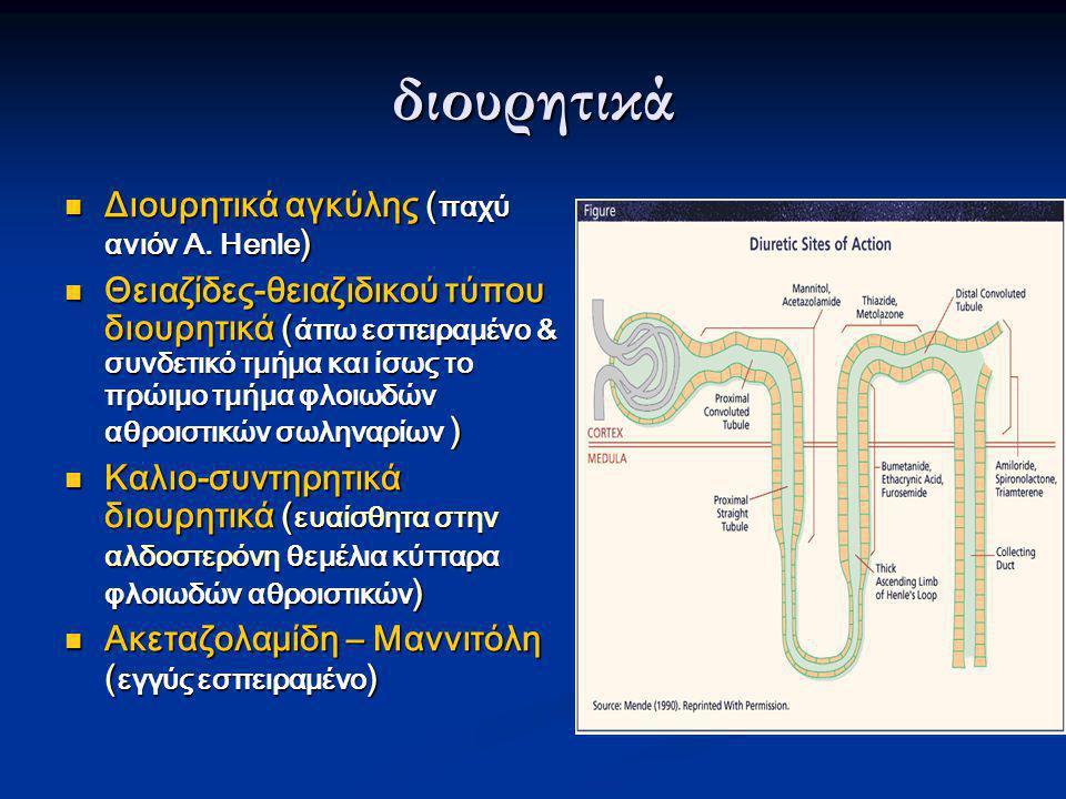 διουρητικά  Διουρητικά αγκύλης ( παχύ ανιόν Α. Ηenle )  Θειαζίδες-θειαζιδικού τύπου διουρητικά ( άπω εσπειραμένο & συνδετικό τμήμα και ίσως το πρώιμ