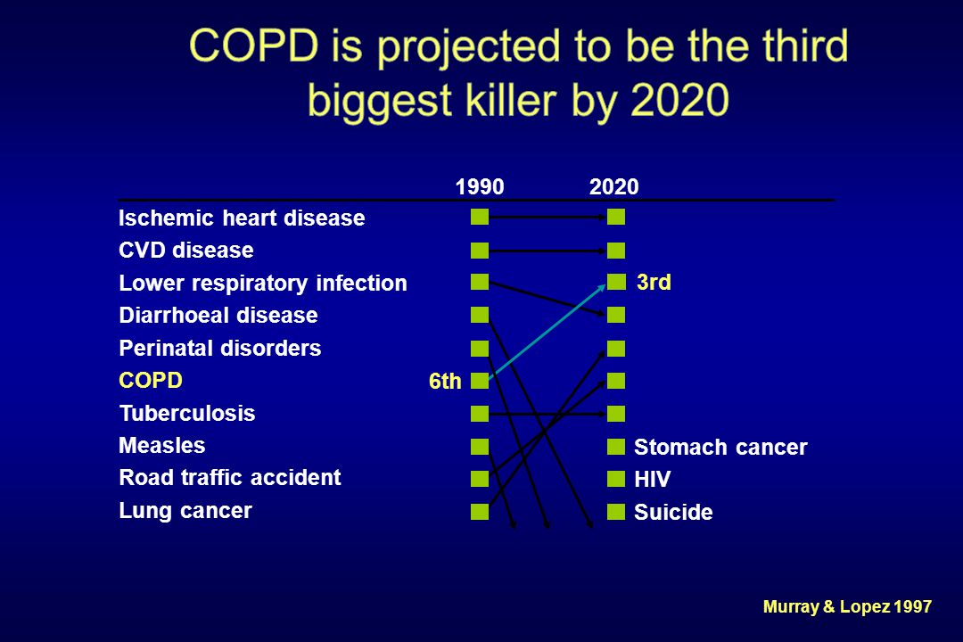 Murray & Lopez 1997 Ischemic heart disease CVD disease Lower respiratory infection Diarrhoeal disease Perinatal disorders COPD Tuberculosis Measles Ro