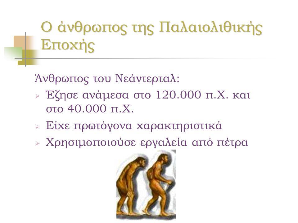 Ο άνθρωπος της Παλαιολιθικής Εποχής Άνθρωπος του Νεάντερταλ:  Έζησε ανάμεσα στο 120.000 π.Χ. και στο 40.000 π.Χ.  Είχε πρωτόγονα χαρακτηριστικά  Χρ