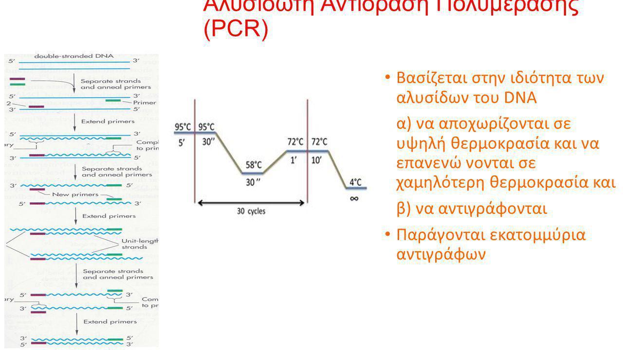 Αλυσιδωτή Αντίδραση Πολυμεράσης (PCR) • Βασίζεται στην ιδιότητα των αλυσίδων του DNA α) να αποχωρίζονται σε υψηλή θερμοκρασία και να επανενώ νονται σε χαμηλότερη θερμοκρασία και β) να αντιγράφονται • Παράγονται εκατομμύρια αντιγράφων