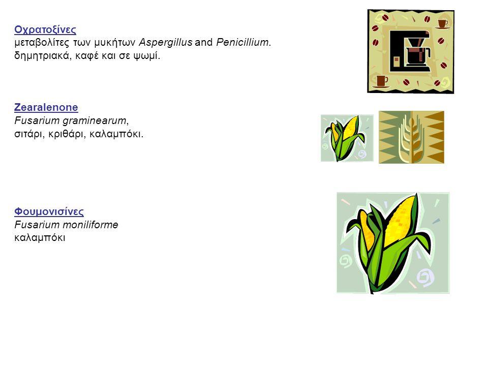 Οχρατοξίνες μεταβολίτες των μυκήτων Aspergillus and Penicillium. δημητριακά, καφέ και σε ψωμί. Zearalenone Fusarium graminearum, σιτάρι, κριθάρι, καλα