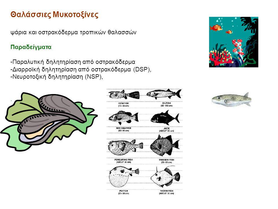 Θαλάσσιες Μυκοτοξίνες ψάρια και οστρακόδερμα τροπικών θαλασσών Παραδείγματα -Παραλυτική δηλητηρίαση από οστρακόδερμα -Διαρροϊκή δηλητηρίαση από οστρακ